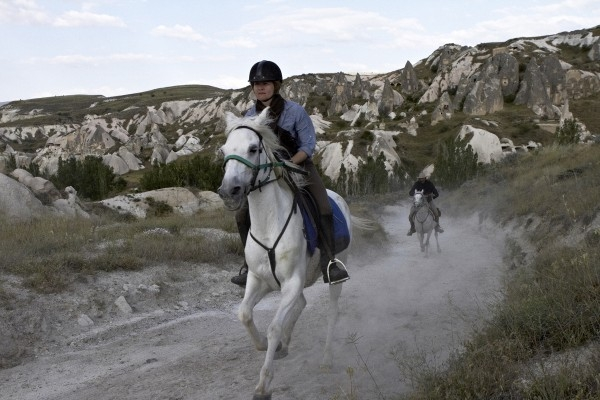 Book For Horse Riding Tours